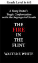 Book Cover with Text the Fire in the Flint